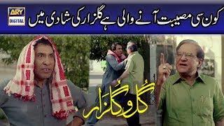 Kon Si Musibat Aane Wali Hai Gulzar Ki Shadi Main | Gul O Gulzar | Best Scene | ARY Digital.