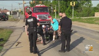 New Castle First Responders Save Ducklings