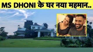 WATCH: MS DHONI के घर आया नया मेहमान, माही को Miss कर रही हैं Sakshi | Sports Tak