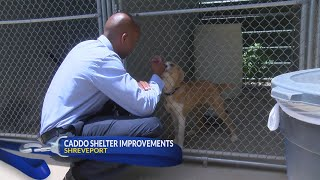 Caddo Animal Shelter director talks improvements and future plans