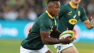 Reviewing Springboks v Los Pumas - World Cup Warm Up