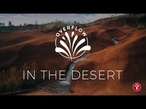 Overflow in the desert  Louis Kotz