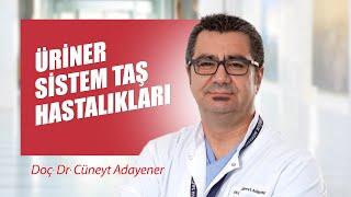 [Video] Üriner sistem taş hastalıkları - Prof. Dr. Cüneyt Adayener