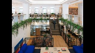 WeWork is losing $219,000 an hour!