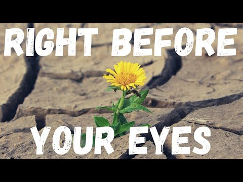 FULFILLMENT OF PROMISE RIGHT BEFORE YOUR EYES  OIL & SPICES ~ Ep. 76 (Day 16)