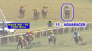 Calcutta Race Preview 23 July 2019