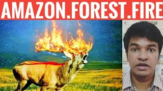 Amazon Forest Fire Explained | Tamil