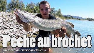 Pêche au brochet en Durance