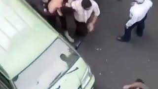 Iranian Animal Rights Activist Violently Arrested For Protesting Against Inhumane Killing Of Dogs