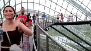 Gardens By The Bay Cloud Forest Followed by Maxwell and Chinatown Food Courts in Singapore