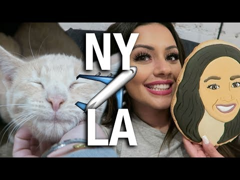 ?? URBAN DECAY PARTY ? HELICOPTER RIDE  ? CAT CAFE ?? YOLI FACIAL ? NY + LA VLOG