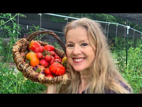 THIS IS WHY I DO IT | Summer Garden Update