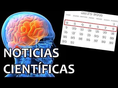 Revivirán cerebros humanos | Noticias 2/5/2016