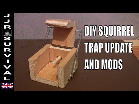 DIY SQUIRREL TRAP UPDATE