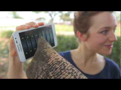 Elephant Plays with a Galaxy Note!