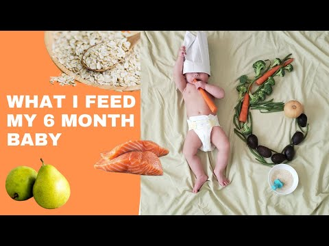 WHAT MY 6 MONTH INFANT EATS