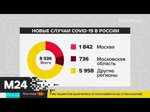 Как выявленные за сутки случаи COVID-19 распределились по регионам РФ - Москва 24 photo