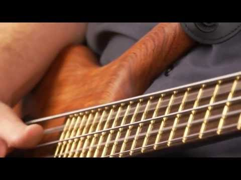 The Warwick Thumb Bolt-On 5-string