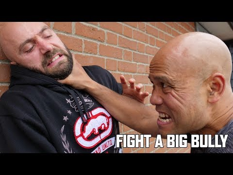 How do you fight a big bully?