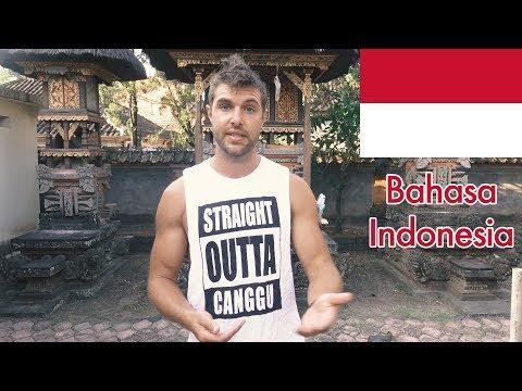 Canadian Teaches Bahasa Indonesia! (Language Challenge Pt. 1) - UCd5xLBi_QU6w7RGm5TTznyQ