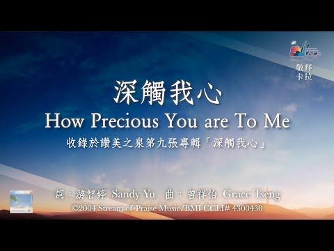How Precious You are to MeOKMV (Official Karaoke MV) -  (9)