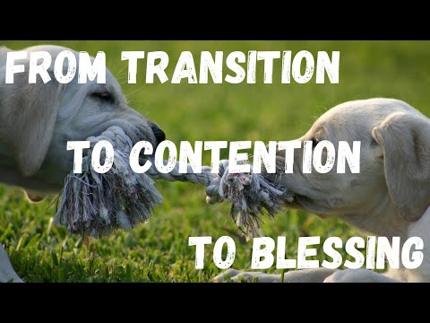 FROM CONTENTION TO BLESSING Act 1 Scene 28  OIL & SPICES ~ Ep  90