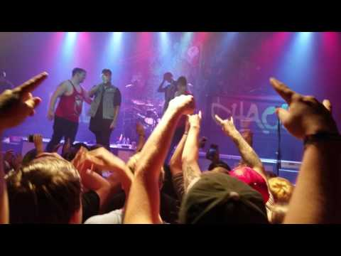 Two Fans Absolutely Kill It When ATTILA Invites Them on Stage to Perform PAYBACK - UCJa8eNGI41F2P48nZ5FUNzA