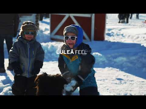 LULEÅ REAL // This is our arctic lifestyle