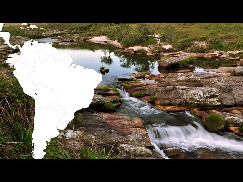 Protecting Natural Capital in Brazil  | CH