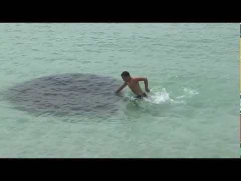 Potwór z Loch Ness na Florydzie?