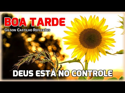 Mensagem de Boa Tarde /Deus Está No Controle , Confie!