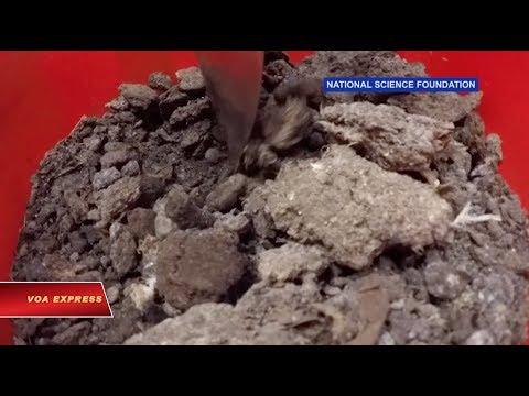 Lợi nhuận từ chất thải gia cầm (VOA)