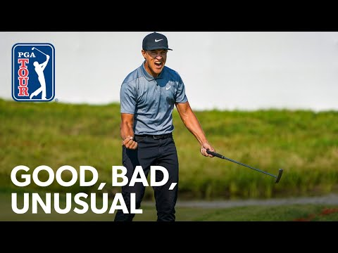 Champ wins battling illness, Oosthuizen is runner-up again and Bubba?s toe putter