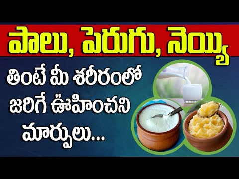 Health Benefits and Side Effects of Milk, Ghee and Curd || Prof. Dr. Pantula Raghupathi || SumanTV