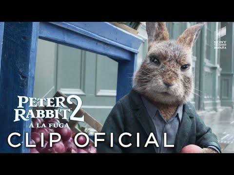 "PETER RABBIT 2 - ""Conoce a Barnabás"" Clip en ESPAÑOL | Sony Pictures España"