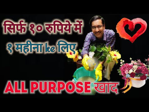 घर पर बनाएं All Purpose तरल खाद / सिर्फ १० रुपिये में / Home Made All Purpose Liquid fertilizer