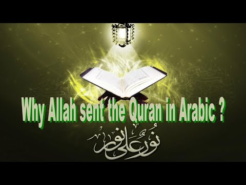 Book of Guidance... Sunni Muslim Mr Maybe & C P Chat Live