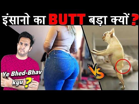 इंसानों के इतने बड़े BUTT क्यों होते है दूसरे जानवरों के मुकाबले Why Do Humans Have Big Butt