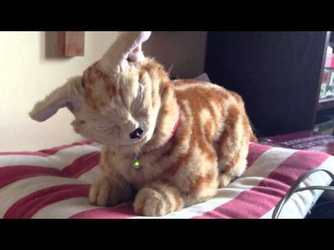 NeCoRo Red Tabby robotic cat, sleepy - UC0rA0Wp8ey1quwCVAmcAPQA