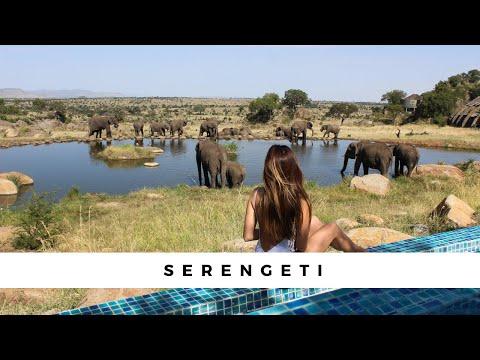 The Serengeti Four Seasons - An unforgettable Safari! - UCG_mkYKQc6b_fZa0xTiGzIg