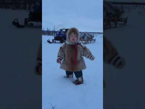 Ребенок оленеводов гуляет зимой