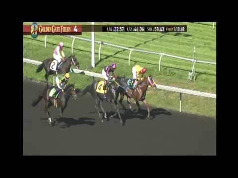 Maven Harry wins 10/21/16