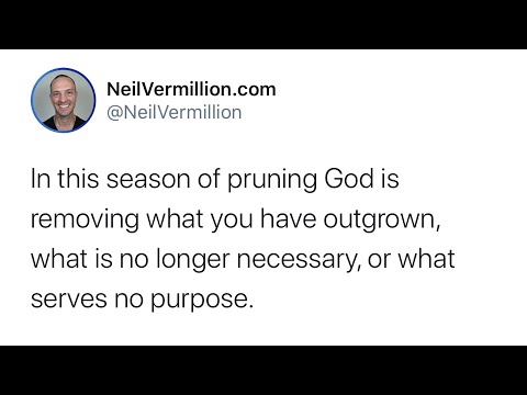 Pruning Amidst This Season Of Advancement - Daily Prophetic Word