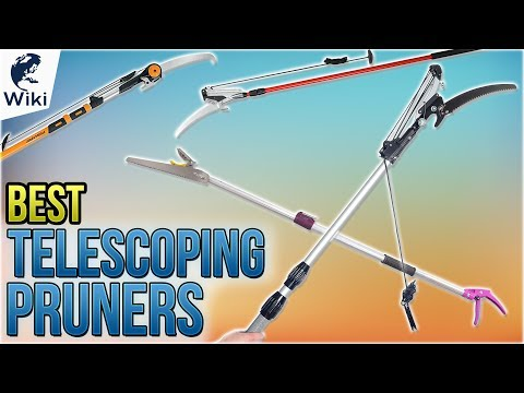 9 Best Telescoping Pruners 2018 - UCXAHpX2xDhmjqtA-ANgsGmw