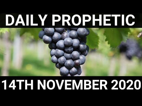 Daily Prophetic 14 November 2020 11 of 12 Subscribe for Daily Prophetic Words of encouragement