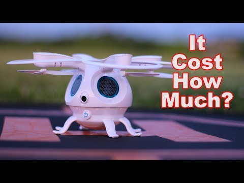 You Won't Believe The Price on This Drone - Flypro Squid - TheRcSaylors - UCYWhRC3xtD_acDIZdr53huA