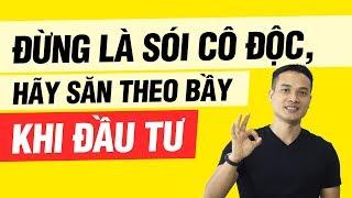 ĐỪNG LÀ SÓI CÔ ĐỘC KHI ĐẦU TƯ | Thai Pham