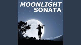 Moonlight Sonata (Marimba Version)