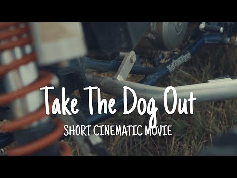Take The Dog Out