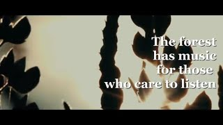 Together we can sa...